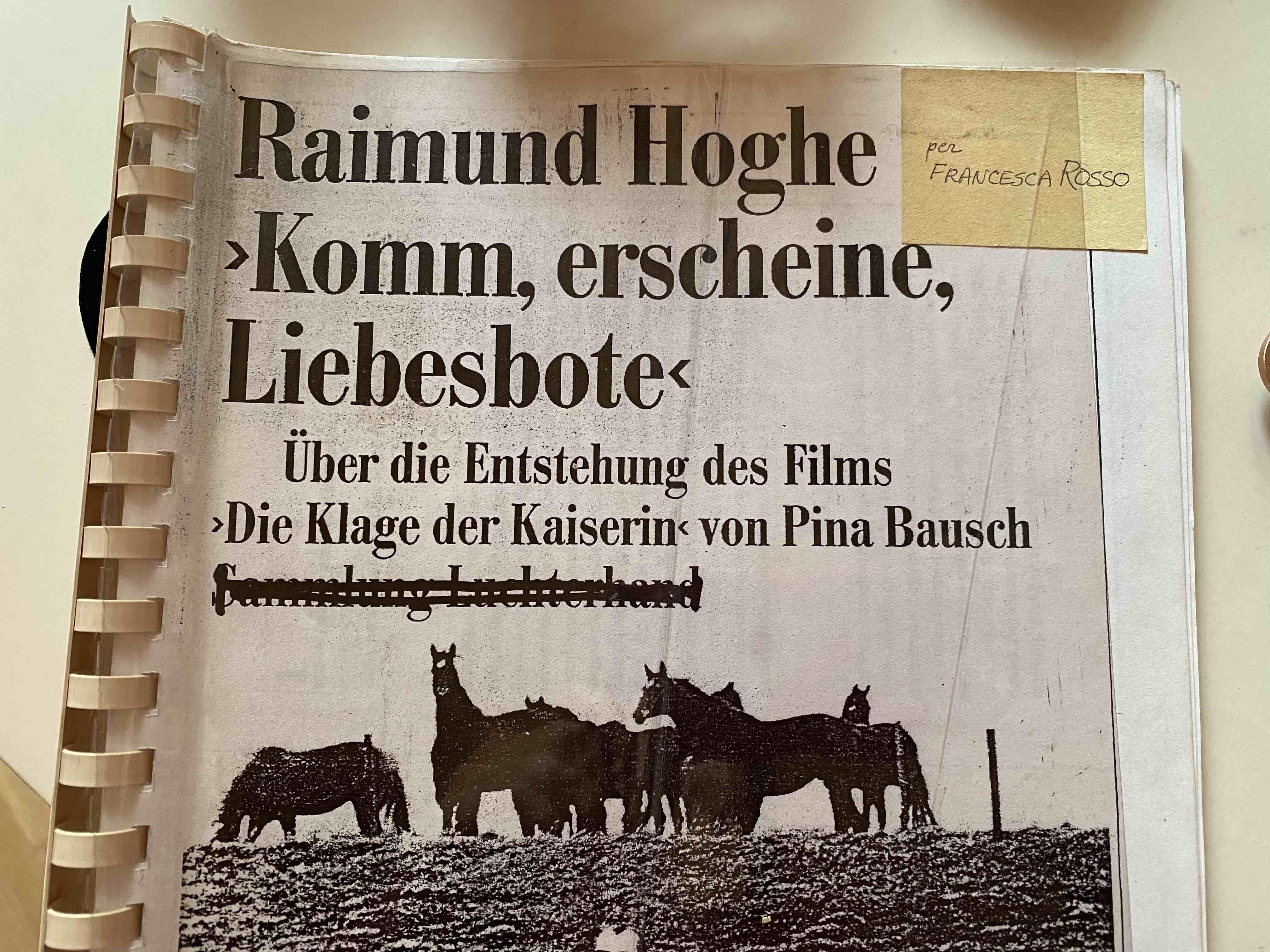 RaimundHoghe